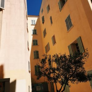 Olivier & habitat provençal